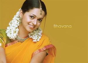 South indian actress latest hd wallpapers regional wallpaper bhavana menon hd pics in saree altavistaventures Gallery