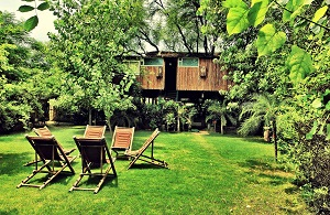 Tree House Resort Jaipur Room Rates