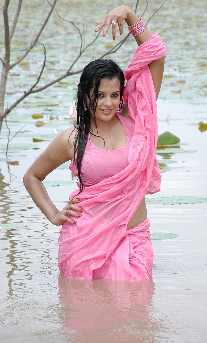 Sensuous 'Saree Songs' Pics Sensuous 'Saree Songs Bollywood actress hot wet saree photos