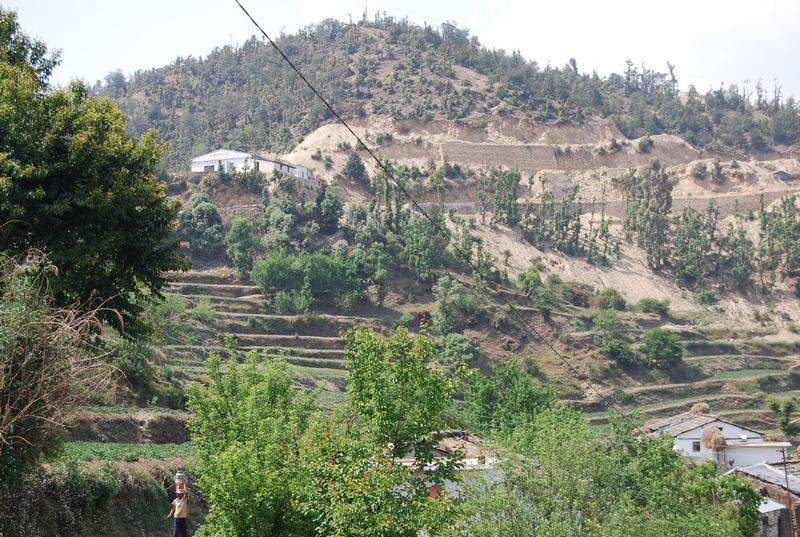 Mukteshwar India  City new picture : Mukteshwar honeymoon Place in India