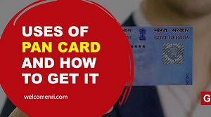 Advantages of PAN Card for NRIs & How to Get it Online